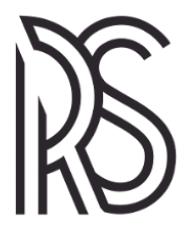 RS ADVOCACIA & CONSULTORIA